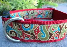 "1.5""  Quick Release Dog - Ciao Bella - Medium or Large (or as a Martingale ) Choose web color"