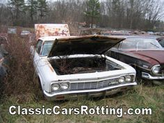 classic cars rotting  | 1966 Chevrolet impala, Junk Car Removal, get an offer in minutes