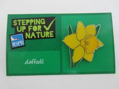 Charity Pin Badge RSPB Stepping Up For Nature Daffodil Enamel Flower On Card