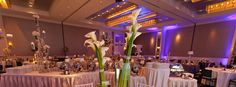 Naperville Illinois Hotel Wedding Venues - This is Hotel Arista. Possibility!