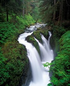 Sol Duc Falls Olympic National Forest, WA