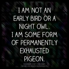 Funny Quote Of The Day Picture Funny Quote Of The Day. Here is Funny Quote Of The Day Picture for you. Funny Quote Of The Day whenever a bird shits on my car funny quote. Funny Quote Of Quotes Thoughts, Me Quotes, Funny Quotes, Funny Memes, Funniest Quotes, Memes Humor, Funny Videos, Cant Sleep Quotes Funny, Lupus Quotes