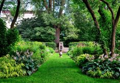 This lush plant garden creates a walkway between two lovely patches of plants, making a fabulous path through the yard. Leafy Plants, Large Plants, Types Of Plants, Lush Garden, Shade Garden, Garden Spaces, Garden Beds, Grass Type, Plant Wall