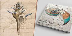 Knižka na vyfarbovanie, ktorá je oslavou matematickej krásy prírody s ručne kreslenými Golden Ratio ilustráciami