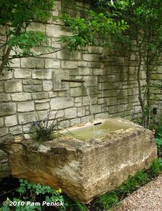 Austinite Berthold Has constructed the wall fountain with limestone trough.  Christy Ten Eyck is the owner and landscape architect who designed this garden...