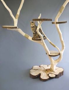 Catlounge cat tree natural wood