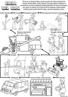 Actividades Escolares: imagenes para trabajar el campo y