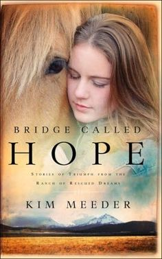 A tear-jerking sequel. Bridge Called Hope by Kim Meeder.