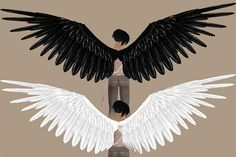 Gallery For > Angel With Wings Spread