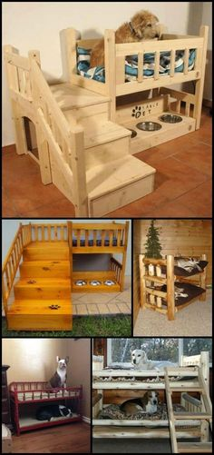 How to Build a Bunk Bed For Your Pets. They always deserve to have their own, personal space. Got more than one fur baby in the household? Make a DIY dog bunk bed for them! Animal Room, Animal House, Dog Bunk Beds, Cute Dog Beds, Doggie Beds, Pet Beds For Dogs, Pet Beds Diy, Dyi Dog Bed, Unique Dog Beds