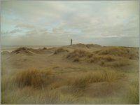 Tanja Riedel - Sanddünen mit Leuchtturm