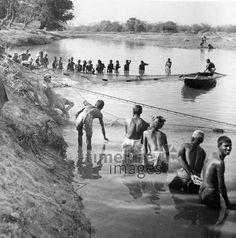Fischfang bei Purnea, 1936 Timeline Classics/Timeline Images #Fischer #Fischerei #Angler #Angeln #Fisch #Fischen #Fishing #Fisher #Fishery #Fish #Indien #Fluss #Tradition #Netz #Netze #Fischfang