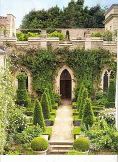 Amazing Gothic Garden Wall and Topiary