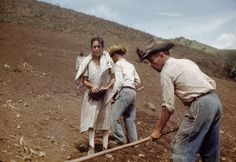 Trabajando la Tierra en la zona montañosa de la isla // Working the land in the mountainous area of the island