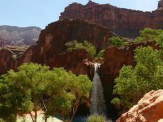 Havasupai Falls - Grand Canyon National Park - Reviews of Havasupai Falls - TripAdvisor