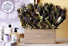 Sweet! All things lavender! A Touch of Lavender on OneKingsLane.com