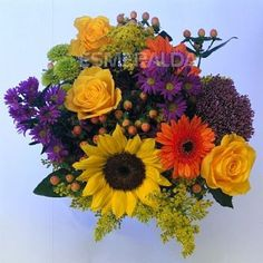 purple orange yellow flowers | Recently Viewed (0) Create a Wish List