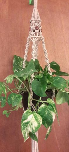 Pearl Beige Macrame Plant Hanger with Walnut Beads & Birdcage top ~~ Indoor / outdoor ~~~ other colors available by Hamptonfoxx on Etsy Macrame Hanging Planter, Hanging Planters, Door Decks, Pot Hanger, Flower Pots, Flowers, Bird Cages, Indoor Outdoor, Beige
