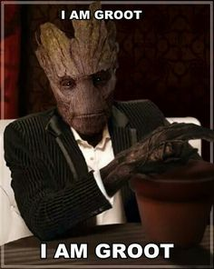 Of cource it is a nod to POPULAR MEME If you want blank image, here: Groot without text (use free, but credit is. The Most Interesting Tree in the Galaxy Marvel Fan, Marvel Heroes, Marvel Characters, Marvel Comics, Gaurdians Of The Galaxy, Guardians Of The Galaxy Vol 2, Groot Avengers, Drax The Destroyer, Groot Guardians