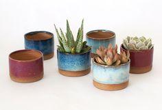 Sister Golden | Ceramic Planter (Multiple Colors)