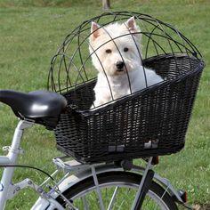 → Køb Trixie Cykelkurv Til Hunde – Bagagebærer!