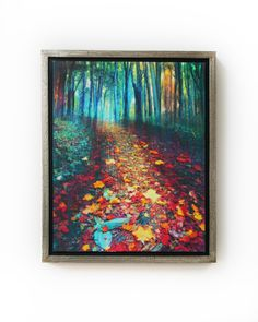 Where leaves gather, 18x22 Framed, tree art, #nature photography, autumn leaves, Signore, Art, hiking trails, #Michigan artist #Fall decor by dahliahousestudios on Etsy https://www.etsy.com/listing/258886721/where-leaves-gather-18x22-framed-tree