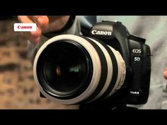 Pin now, watch later....Canon EF Lenses - Lens tutorials 3/5 - Lenses for sports and wildlife