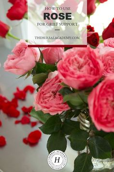 Rose is a commonly use herb for grief support. Learn how rose can soothe the human spirit during grief as well as some simple recipes for use in this post. Home Remedies For Colds For Babies, Cold Home Remedies, Natural Home Remedies, Herbal Remedies, Health Remedies, Herbal Tinctures, Herbalism, Natural Medicine, Herbal Medicine
