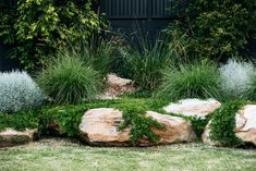 The new look Aussie backyard - Native Plant Project - Outdoor living Backyard Garden Design, Garden Landscape Design, Backyard Landscaping, Australian Garden Design, Australian Native Garden, Back Gardens, Outdoor Gardens, Coastal Gardens, Native Plants