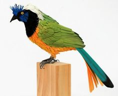 Diana Beltran Herrera is a Colombian designer and illustrator who creates realistic, vibrantly colored paper birds. Diana Beltran Herrera h. Paper Art, Paper Crafts, Paper Installation, Cut Out Art, Pop Up Art, Paper Birds, Bird Sculpture, Art Sculptures, Amazing Art