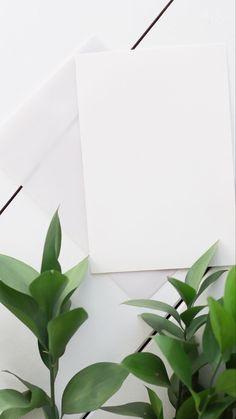 Framed Wallpaper, Flower Background Wallpaper, Flower Backgrounds, Plant Wallpaper, Wallpaper Backgrounds, Instagram Frame Template, Poster Background Design, Photo Collage Template, Instagram Background