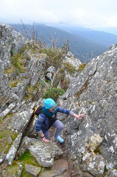 Sugarloaf Peak - Cathedral Range State Park - Victoria State Parks, Cathedral, Hiking, Range, Victoria, The Incredibles, Australia, Explore, Mountains