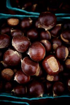 Hazelnuts..