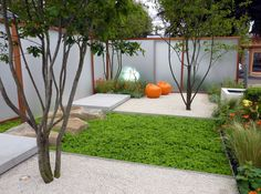 Meerstammige bomen, zo mooi! Komen hier perfect tot hun recht. Conceptual design, not sure by whom.