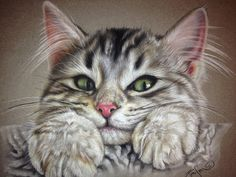 "Custom Color Pastel Animal/Pet Drawing (Any animal, cat, horse, dog, etc.)  8 1/2"" x 11"". $110.00, via Etsy."
