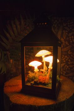 RGB mushroom lamp in lantern - Mushroom lamp - Fungi light - Fairy decor - Nature decor - LED light - Polymer clay night light - Night light - Glowing - Glow bedroom fairy lights Luminaria Diy, Do It Yourself Decoration, Diy And Crafts, Arts And Crafts, Led Licht, Belle Photo, Lanterns, Stuffed Mushrooms, Diy Projects