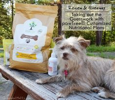 Review & Giveaway: Taking out the Guesswork with pawTree® Customized Nutritional Plans #Sponsored Dog Food Reviews, Red Chicken, Dog Varieties, Take Out, Pet Stuff, Dog Walking, Make Me Happy, Giveaways, Reusable Tote Bags