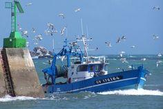 Bateau de pêche rentrant dans le port du Guilvinec, Finistère.