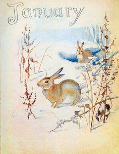 """1926 Vintage ANIMALS /""""SNOWSHOE RABBIT/"""" GORGEOUS COLOR Art Print Plate Lithograph"""