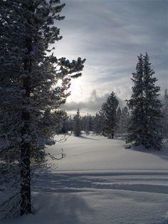 Funäsdalen.  redfoxadventure.com
