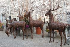 Deers and bucks, at Detroit Garden Works, between 700$ and 1500$