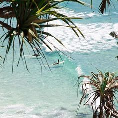 What a day to be in Burleigh! Come and visit us for brekkie and lunch, shop incredible wares by local creative small businesses, rummage… Byron Bay Beach, Surf City, Summer Feeling, Summer Vibes, Mellow Yellow, Australia Travel, Beach Trip, Adventure Travel, Places To Go