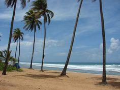 """✈ Playa """"AVIONES"""" en Pin~ones........ Sept. 7 to Sept. 28 - 2012. Algunas fotos de nuestras vacaciones en Puerto Rico; Despues de 18 an~os de no visitar la isla."""