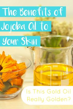 Jojoba oil is considered to be one of the best products used in skin care today It is not a guarded secret that it has multiple benefits to your body, but let us see what exactly it will give to your skin and how to use it for each problem your skin might have. #jojoba #jojobaoil #skincare #jojobaskincare