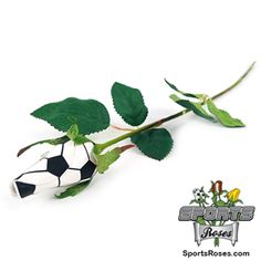 Soccer Rose with Pla