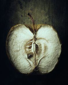Apple Photograph - Transient by Amy Weiss Fruit Photography, Time Photography, Still Life Photography, Artistic Photography, Decay Art, Straight Photography, Growth And Decay, Mushroom Art, A Level Art