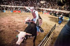 Cuernos Chuecos en el inicio de la FNSM 2015 en Aguascalientes ~ Ags Sports