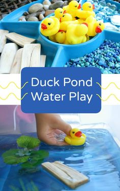Make this Duck Pond Water Play a fun water and sensory table for toddlers and preschoolers! Or a fun activity to add to a farm unit!