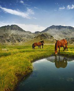 See More   Pirin National Park,Bulgaria:   #holidayspots4u
