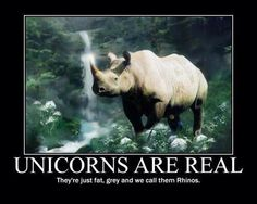 Unicorns are real. They're just fat, gray & we call them rhinos.
